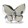 12305_Fantasy_Butterfly