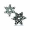 16211_Snow_Flower_a