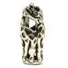 11240_Giraffes