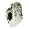 11516_Owl